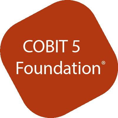 Icon Logo COBIT5 Foundation Kurs bei ITSM Partner
