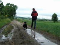 Richard Friedl und Bürohund Pedro beim Feldspaziergang